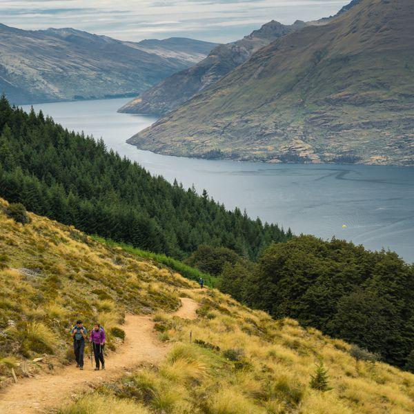 Ben Lomond Hike Looking Over Lake Wakatipu