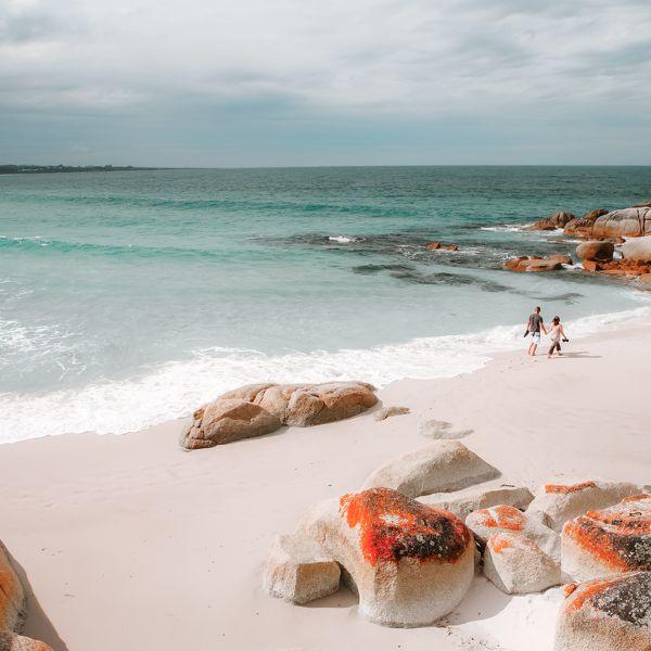 Image credit: Tourism Tasmania & Sean Fennessy