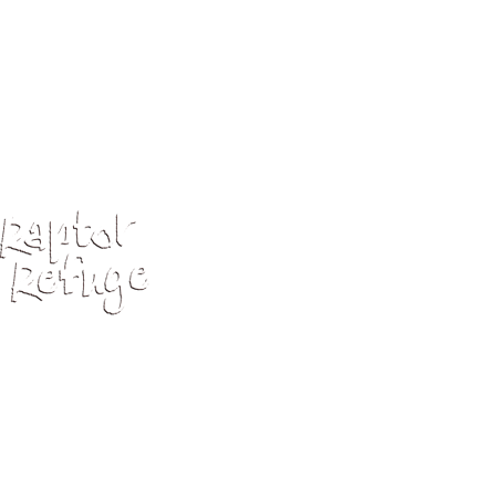 Rr 3Clw Logo Lockup Negative 3