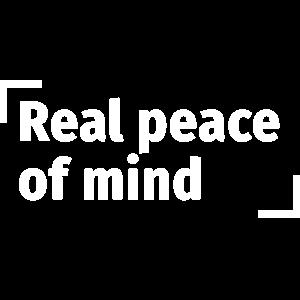 和平的决议