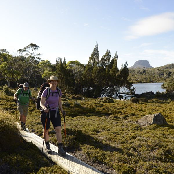 Overland Track Seed Conservation