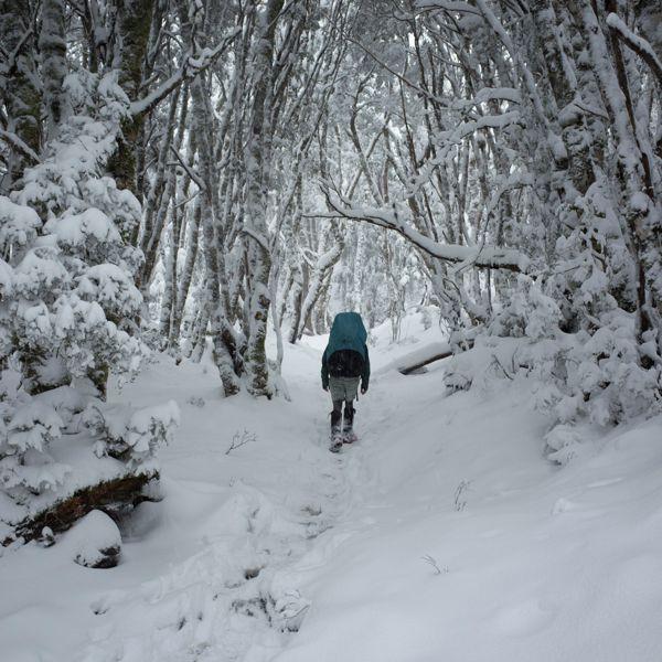 Cradle Mountain Huts Winter Walk