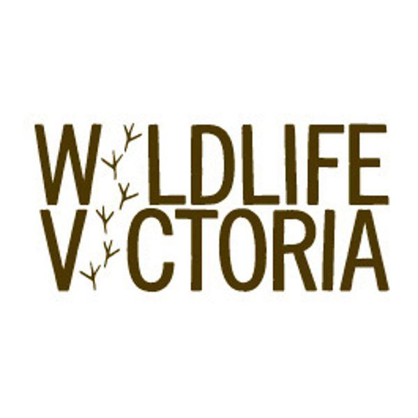 Wildlife Vic Thumb 2