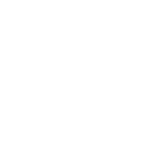 Twcfoundation Logotype Negative