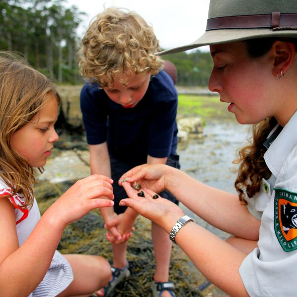 Discovery Ranger Program, Tasmania Parks